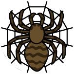 アニマル占い クモ