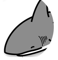 アニマル占い サメ